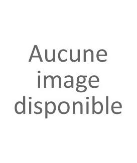 Amortisseur +5 cm Arrière Defender